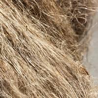 fibre de chanvre